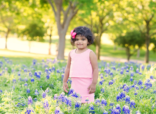 2016 Texas Bluebonnets