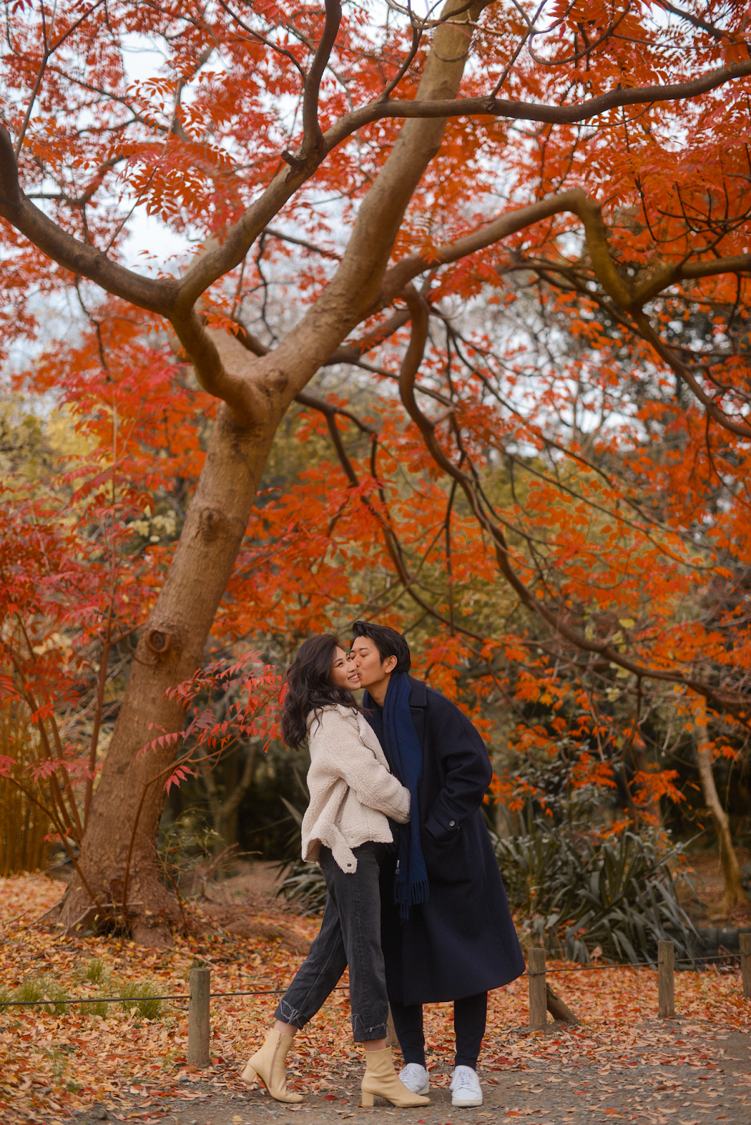 Couple under large red fall tree in Tokyo Hamarikyu Garden, Tokyo in the fall, autumn in Tokyo, Japan travels in the fall - FOREVERVANNY