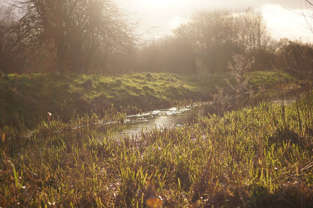 Inspiration from the Norfolk countryside in winter