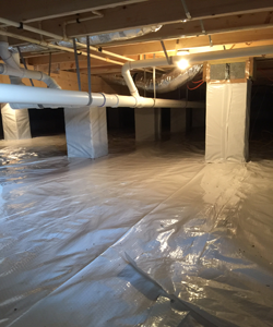 Conditioned Crawl Space With Added Storage   View 1