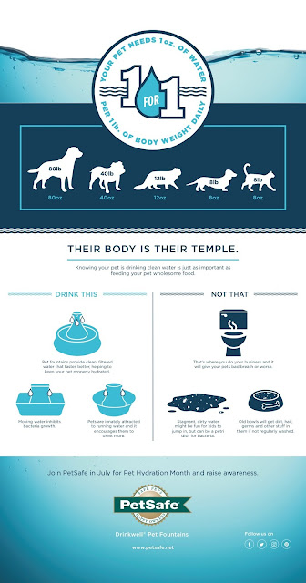 PetSafe Pagoda Fountain|Pet Hydration Month