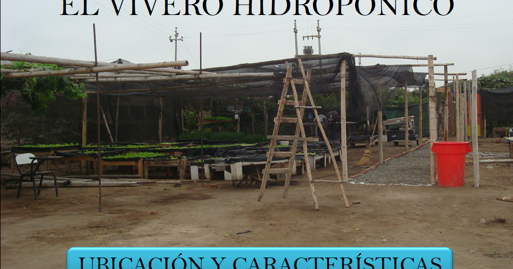 Libros agronomicos peru el vivero hidroponico descargar for Vivero agronomia