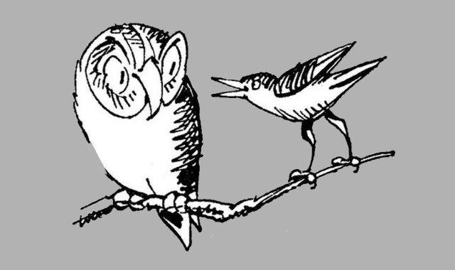 kleine Sammlung von Eulengedichten