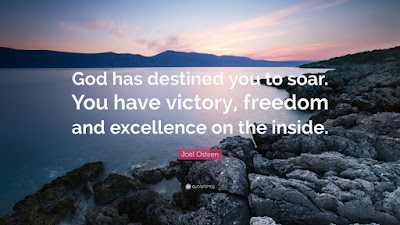 Excellence God Quotes By Joel Osteen