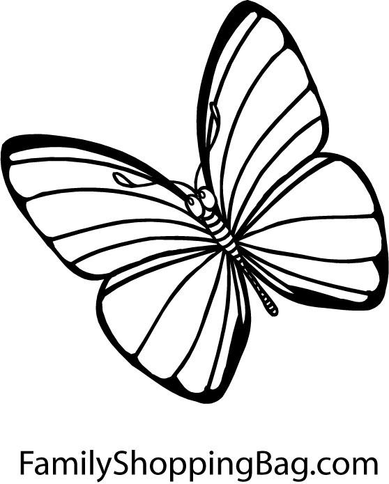 Coloriage En Ligne Papillon Liberate