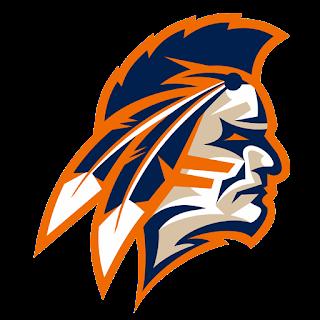 Logo DLS 17 suku