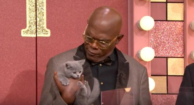 Samuel L. Jackson with cat