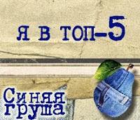 Мы - в ТОП-5 от Синяя Груша!
