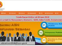 Seleksi Non PNS Komisi Aparatur Sipil Negara Pendaftaran Online sd 20 Juni 2018