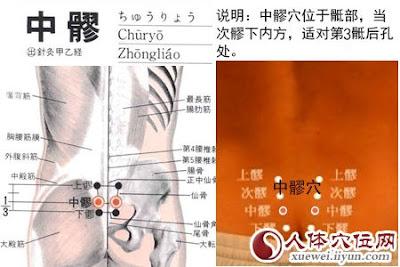 中髎穴位 | 中髎穴痛位置 - 穴道按摩經絡圖解 | Source:xueweitu.iiyun.com