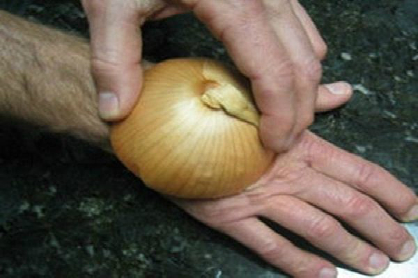 Onion Can Cure At Least 5 Health Problems