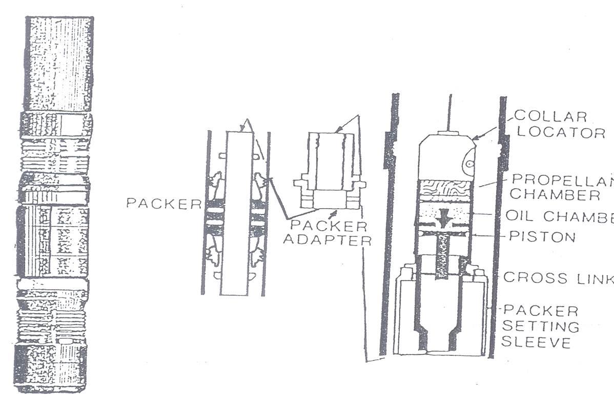 Packer Dan Kegunaannya