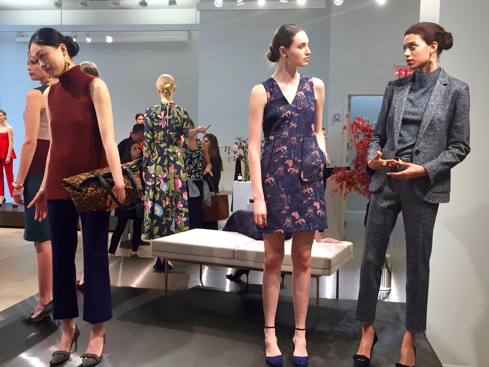 ann taylor fall collection