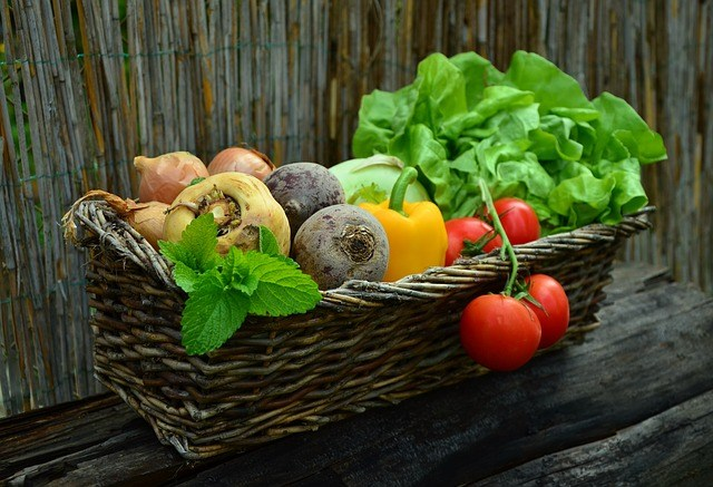 Budidaya Tanaman Hortikultural Jenis Tanaman Hortiultural