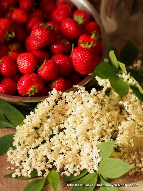 truskaweczki, nalewka truskawkowo bzowa, dziki bez, baldachy kwiatow bzu, nalewka z truskawek i bzu, domowe przetwory