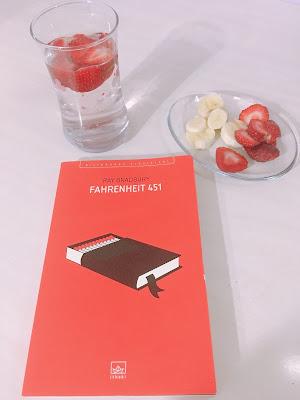 Fahrenheit 451 kitap konusu