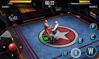 Real Wrestling 3D Apk v1.3