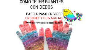 Guantes Dos Agujas y Crochet