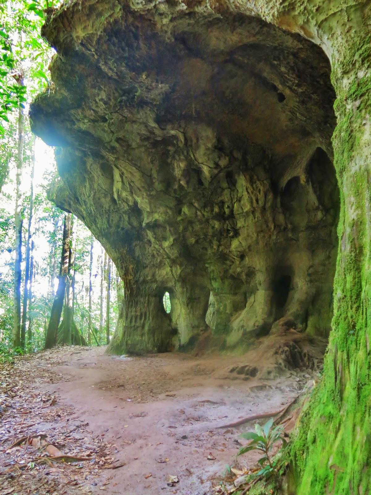 Paredões rochosos próximos à cachoeira da Iracema, em Presidente Figueiredo