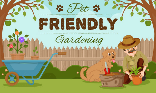 Ensuring The Safety of Your Pet in the Garden