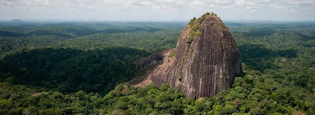 Parc amazonien en Guyane vue aérienne