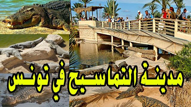 مدينة التماسيح في تونس