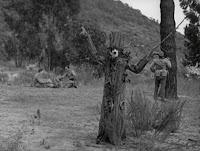 """Кадр из к/ф Чарли Чаплина """"На плечо"""" / Shoulder Arms (1918) - 6"""