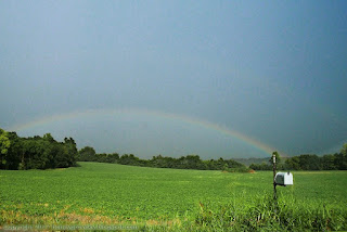 Rainbow over a green field