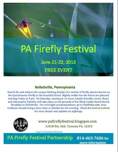 firefly music festival lodging