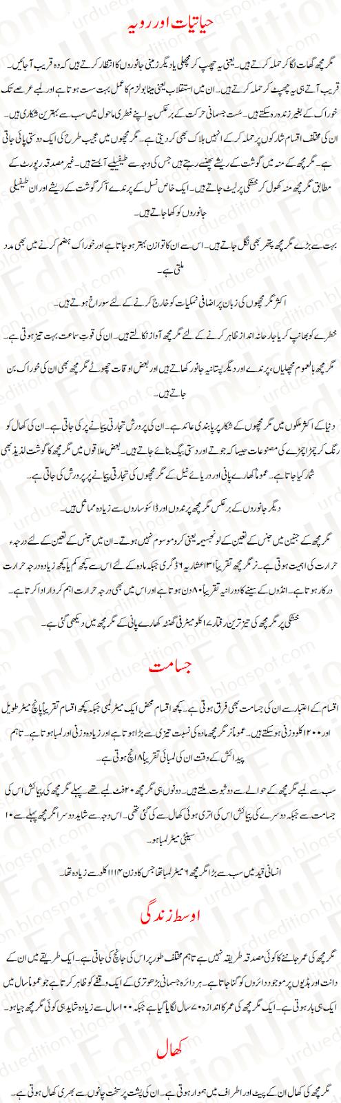 Crocodile paragraph in urdu
