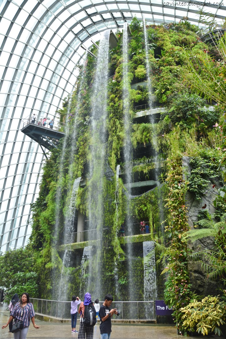 Garden By The Bay Cloud Forest entree kibbles: cloud forest in 2017 @ gardensthe bay [singapore]