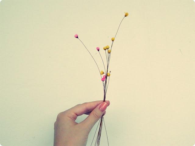 flor seca, 6 on 6, projeto fotográfico,