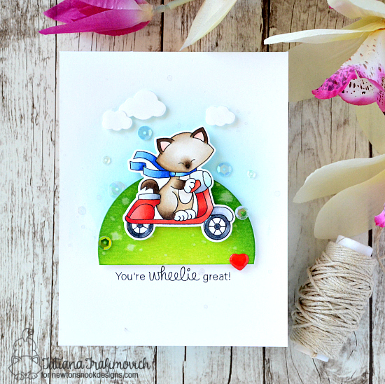 You're Wheelie Great - Cat on Scooter card by Tatiana Trafimovich | Newton Scoots By Stamp Set by Newton's Nook Designs #newtonsnook