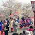 The Oiran Cherry Blossom Festival Report: Tsubame Sakura Festival - Oiran Dochu (つばめ桜祭り)