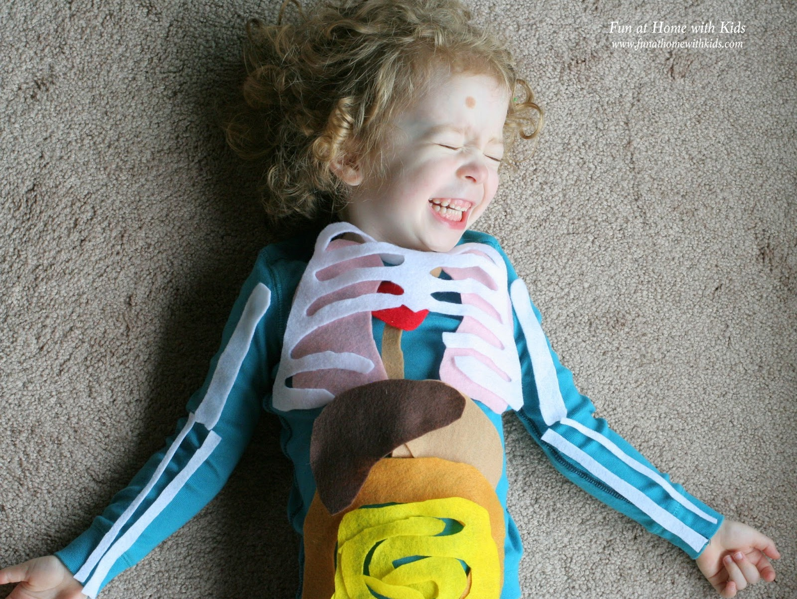 Life Sized Felt Anatomy Model