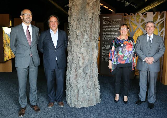Fundação «la Caixa» e BPI trazem exposição «A Floresta» à Zona Ribeirinha de Portimão