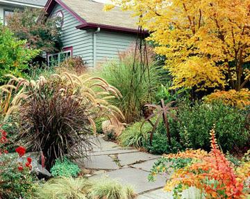 Thiết kế sân vườn với đa màu sắc