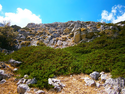 Cerro - pico Mogorrita (1864 metros), la montaña más alta de la Serrania de Cuenca. Autor: Miguel Alejandro Castillo Moya