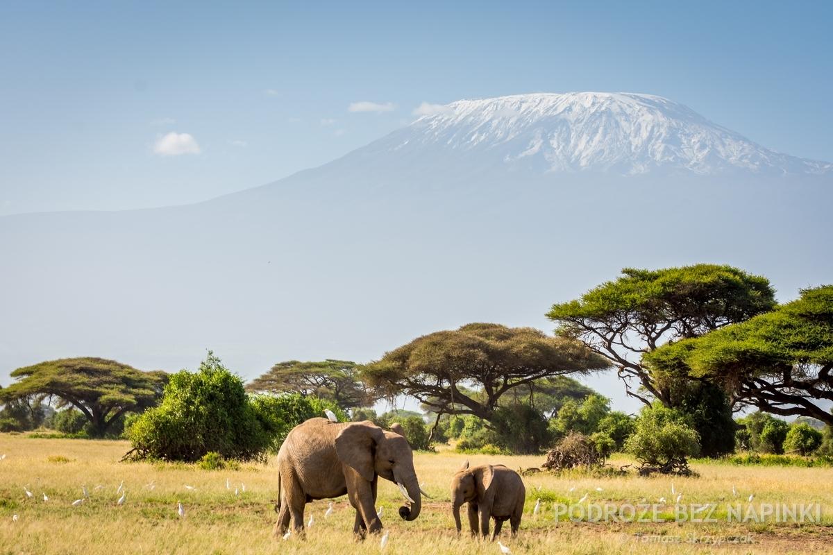 Randki azjatyckie w Kenii