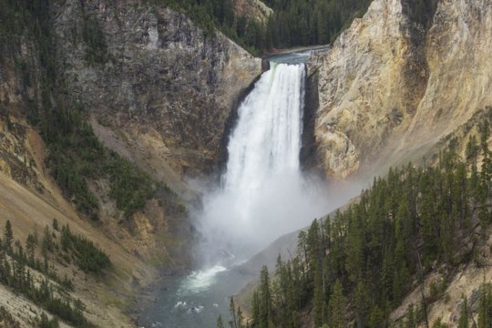 Lower Falls of the Yellowstone River and the Grand Canyon of the Yellowstone