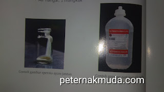 bahan pengencer sperma ayam