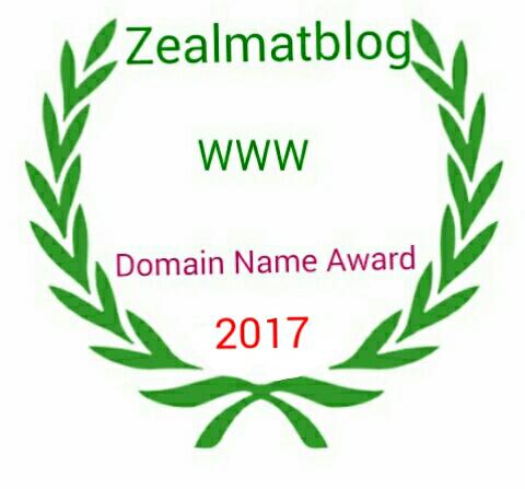 Zealmatblog 2017 Domain Name Award Winner