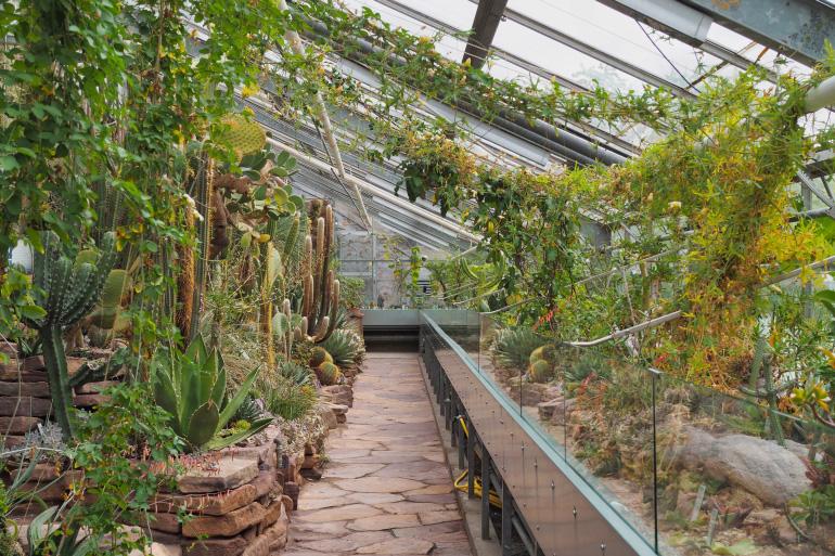 Jardin botanique, Botanisk Have, à Copenhague
