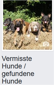 https://www.facebook.com/vermisste.gefundene.Hunde
