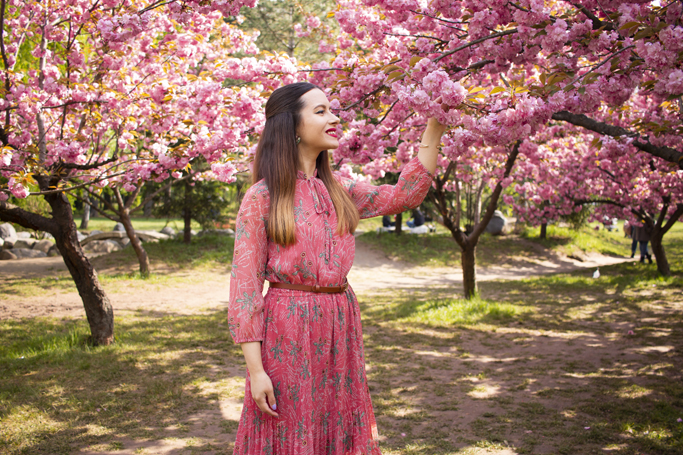 adina nanes spring flowers