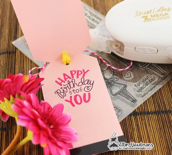 Newton's Nook Designs & Xyron Inspiration Week | Wish Big Birthday Tag by Ellen Haxelmans | Holding Happiness Stamp Set and Fancy Edges Tag Die Set by Newton's Nook Designs | Adhesive by Xyron #newtonsnook #xyroninc