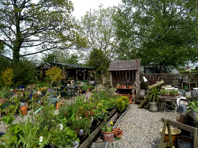 Lawley Nursery Shropshire