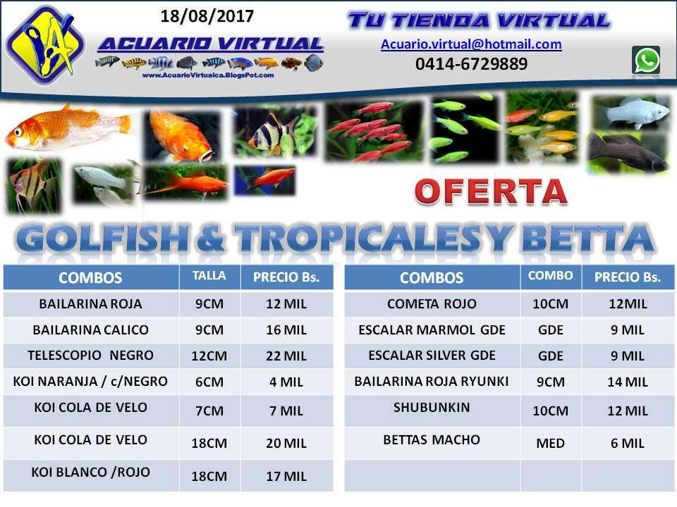 Acuario virtual stock agosto 2017 entregas gratis for Acuario valencia precio