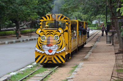 Nehru Zoological Park in Hyderabad District in Telangana