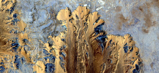 Stone plant fantasy,Abstract Naturalism,abstract photography deserts of Africa from the air,abstract surrealism,mirage in desert,fantasy forms and colors in the desert,plants,flowers, leaves,roots